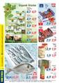 Metro Gıda Sayfa 2