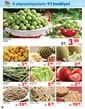 Yılın Kampanyasında Son Günler! 4 alışverişinizin 1i Hediye! Sayfa 2