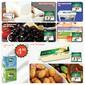 Sarıyer Market 5-15 Ocak Özel İndirim Broşürü Sayfa 2