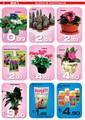 Banio Yapı Market 1-31 Mart Broşürü Sayfa 2