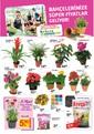Banio 01 - 31 Mart 2015 Kampanya Broşürü Sayfa 2