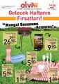 Alvi Market 14-20 Nisan 2017 Kampanya Broşürü Sayfa 1