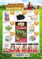 Uyum Market Piknik 13-29 Mayıs 2017 Kampanya Broşürü Sayfa 2