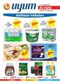 Uyum Market Bu Hafta 14-21 Temmuz 2017 Kampanya Broşürü Sayfa 1