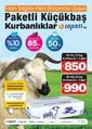 Uyum Market 24 Ağustos - 6 Eylül 2017 Kampanya Broşürü Sayfa 2