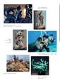 Mavi Maviology 2018 İlkbahar Yaz Koleksiyonu Sayfa 46 Önizlemesi